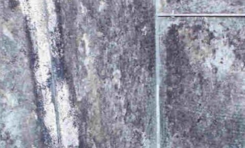 mold grewing in an air duct