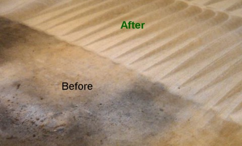 Professional stain removing and steam cleaning oil and grease stains from carpet